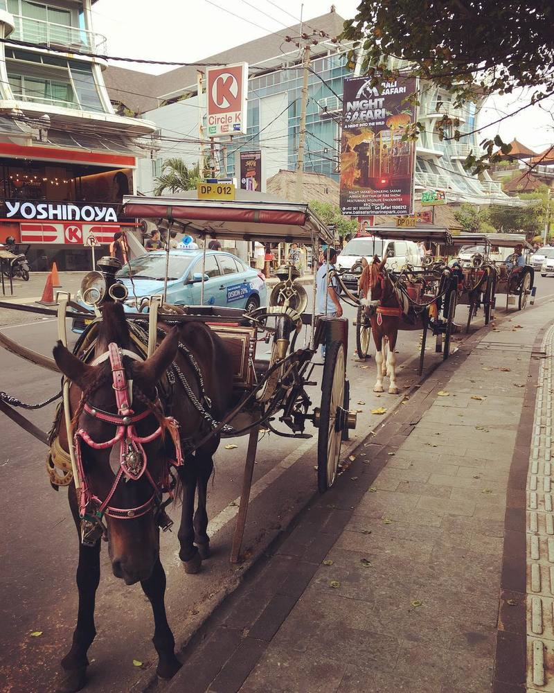 horse-carriage-bali-transport