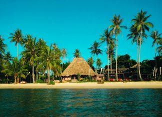 palms-beach-thailand
