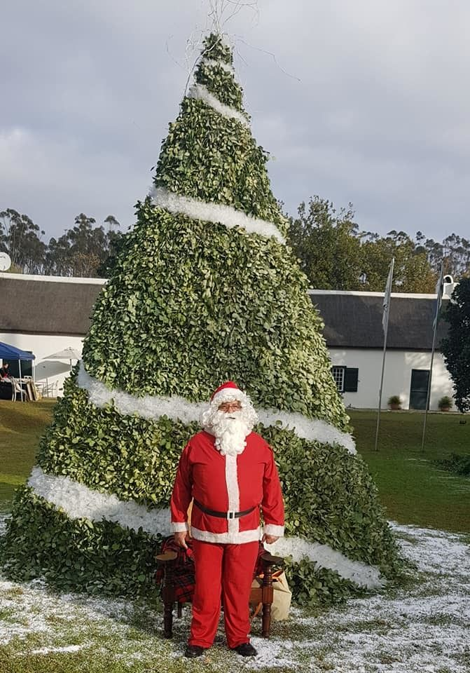santa-christmas-tree-tulbagh