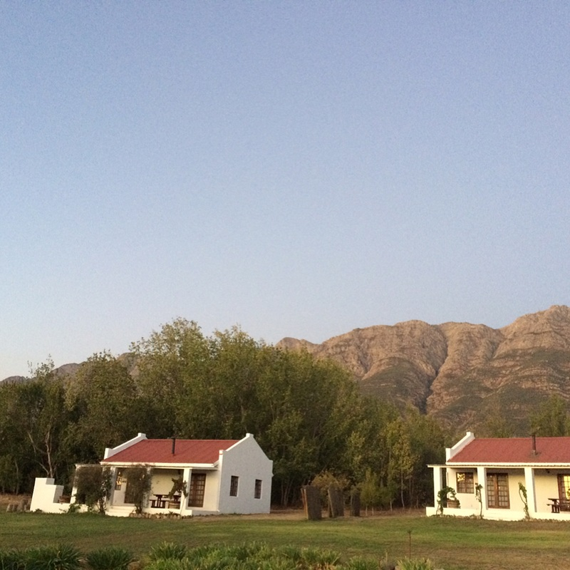 tulbagh-fraaigelegen-farm