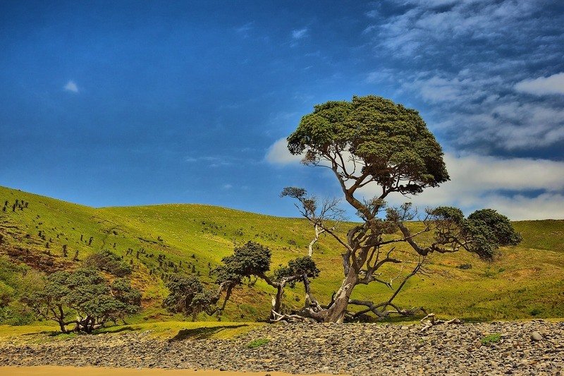 landscape-transkei-coffee-bay