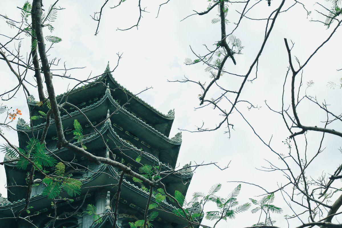 Pagoda surrounded by branches
