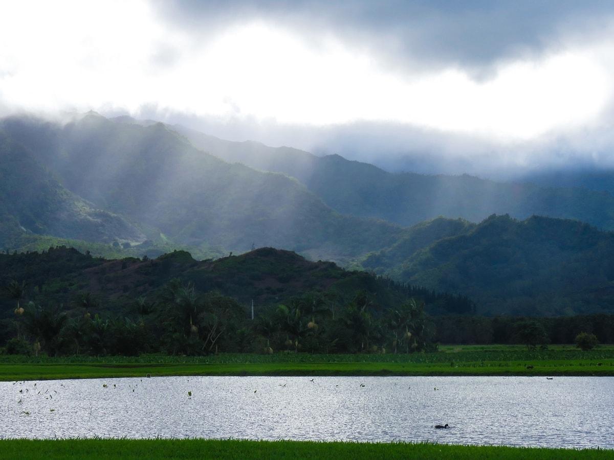 lake in Hanalei north shore kauai