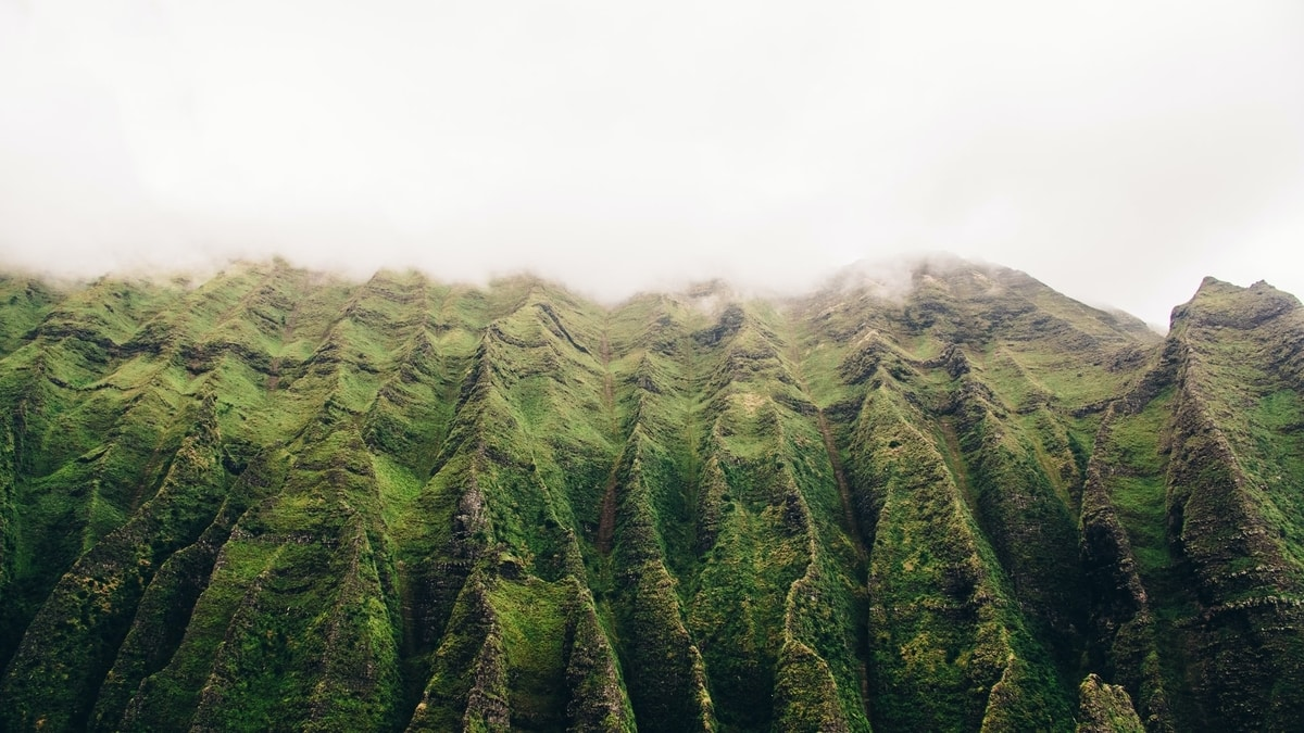 jagged-green-mountain-peaks-covered-in-fog